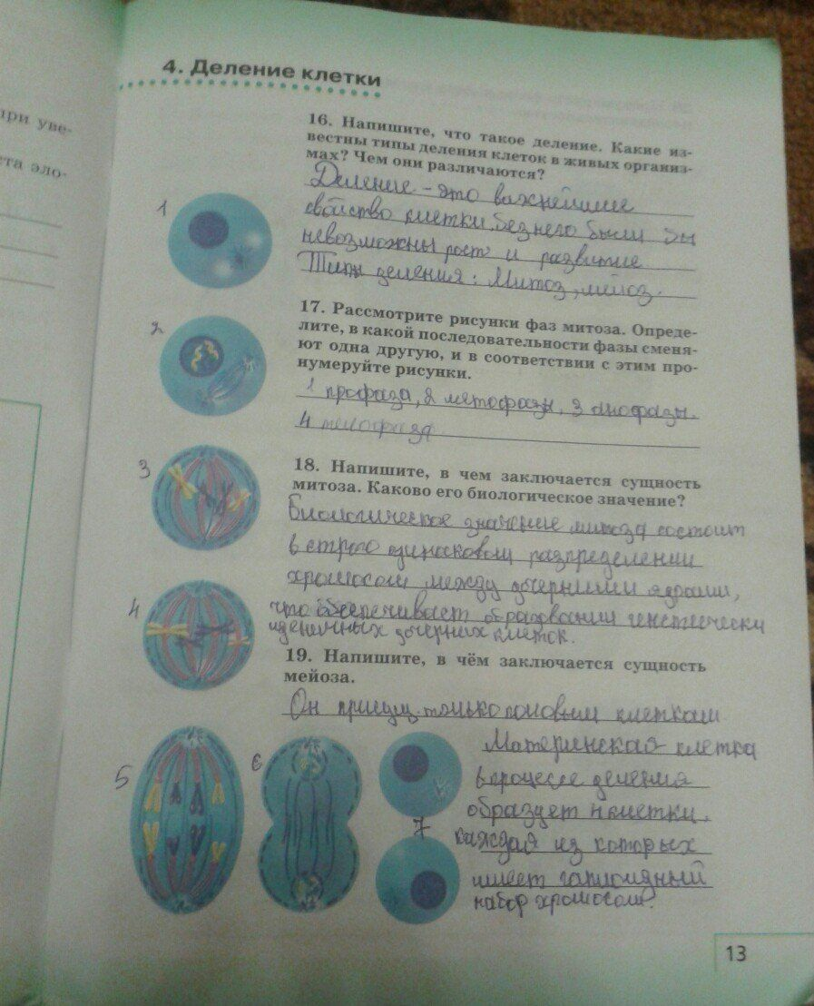 Биология учебник 7 класс пд редакцией тихомирова