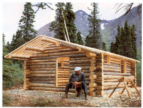 Hand Built Log Cabin How To Build A Log Cabin Cabin Tiny Cabins