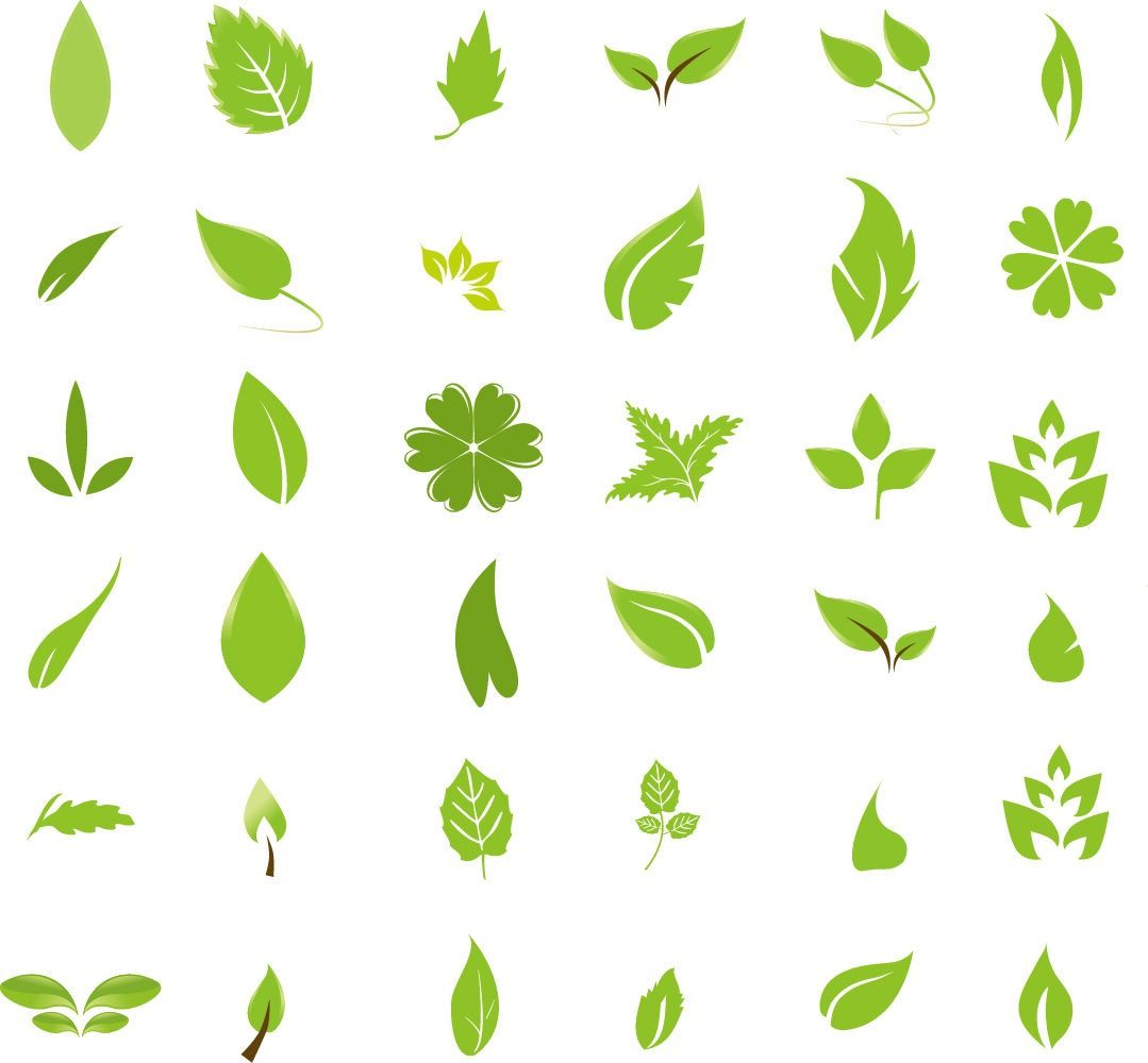free graphic design | Green Leaf Design Elements | Free Vector ...