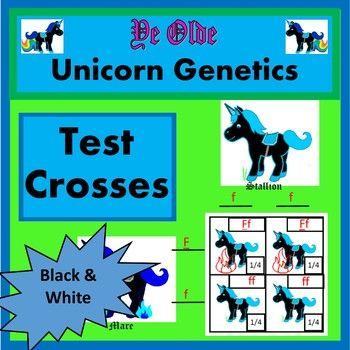 Test Crosses Activity (Test Cross Worksheet) | Pinterest | Genetics ...