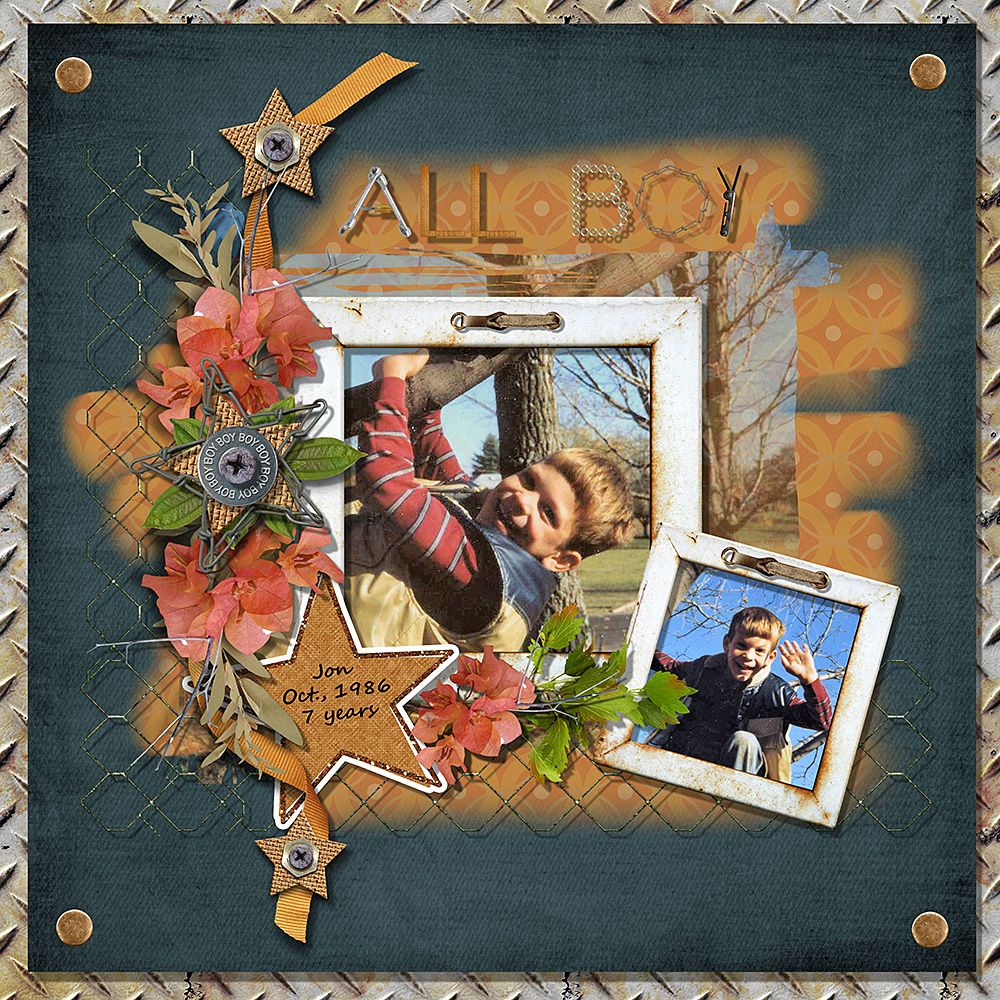 Just The Way You Are by Manu Scraps is a wonderful kit for boy photos.  This page by Mary features her son when he was 7 years old climbing the tree in their front yard.  These are the memories you want to remember for ever!  #digitalscrapbooking #theStudio