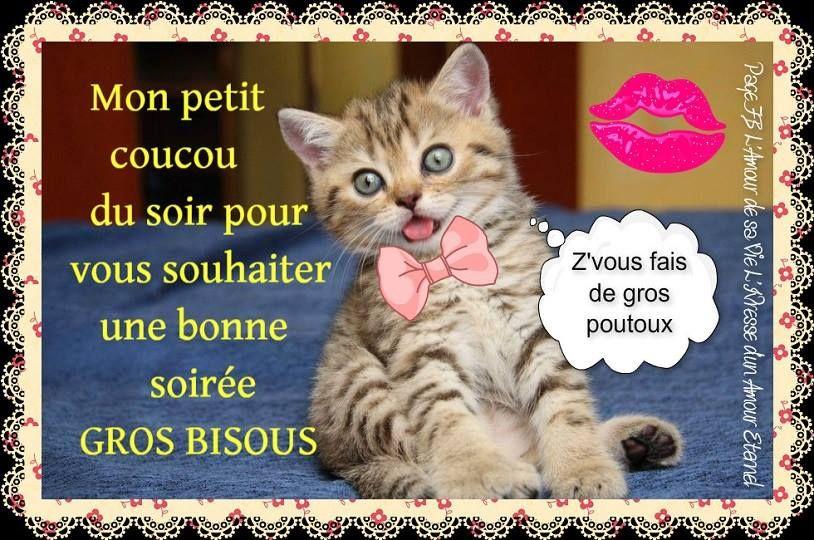 """Résultat de recherche d'images pour """"gifs bisous du soir"""""""