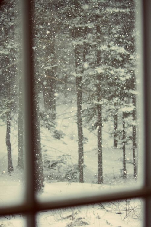 Looking Out The Log Cabin Window On A Snowy Day Cuddled Up With My Girlcozy Warm Insideahh Life Is Great
