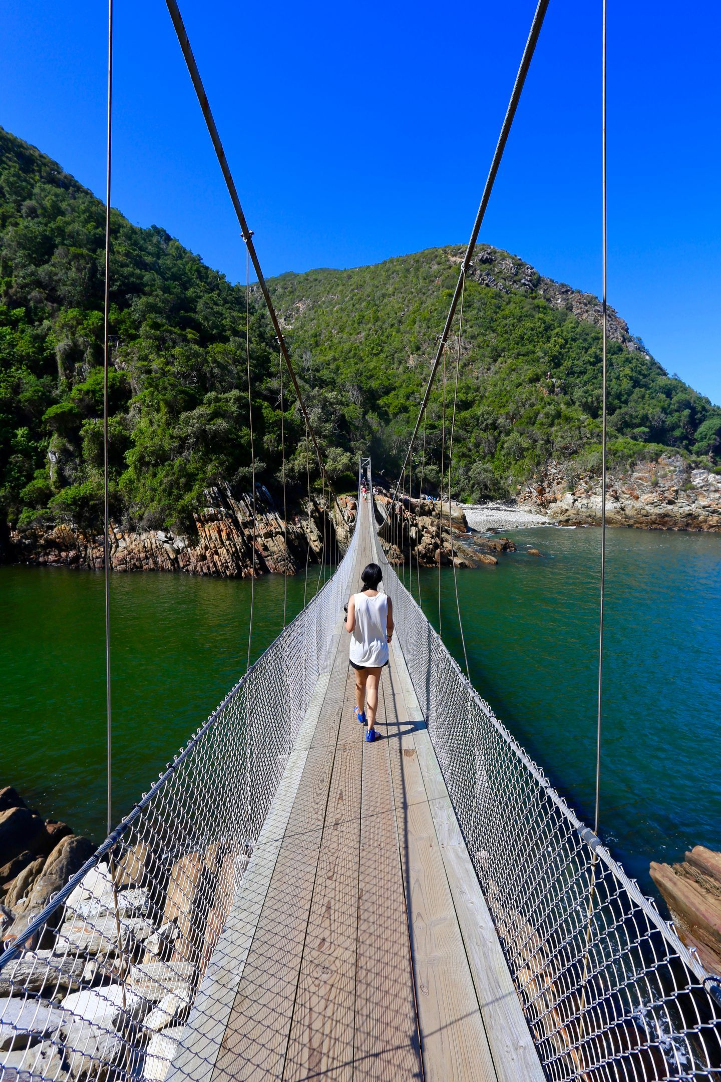 Top 5 stops on the Garden Route in South Africa South