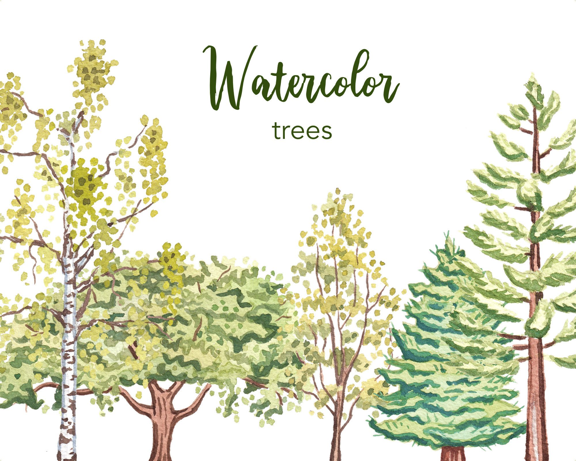 Watercolor Clipart Tree Clipart Watercolor Tree Clipart