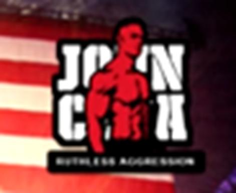 John Cena Aka The Dr Of Thuganomics Wwe Logo Wwe Iron On Transfer