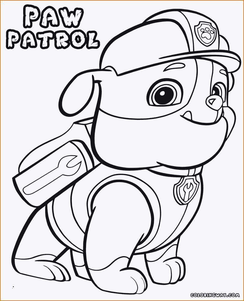 malvorlagen paw patrol zentrale  tiffanylovesbooks
