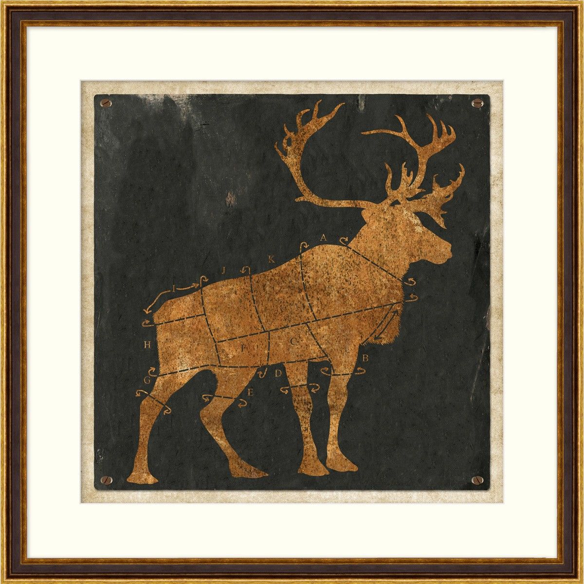 14658 Stag Diagram 1 - Game - Animals - Our Product W 32.5 H 32.5 #WildGame $370