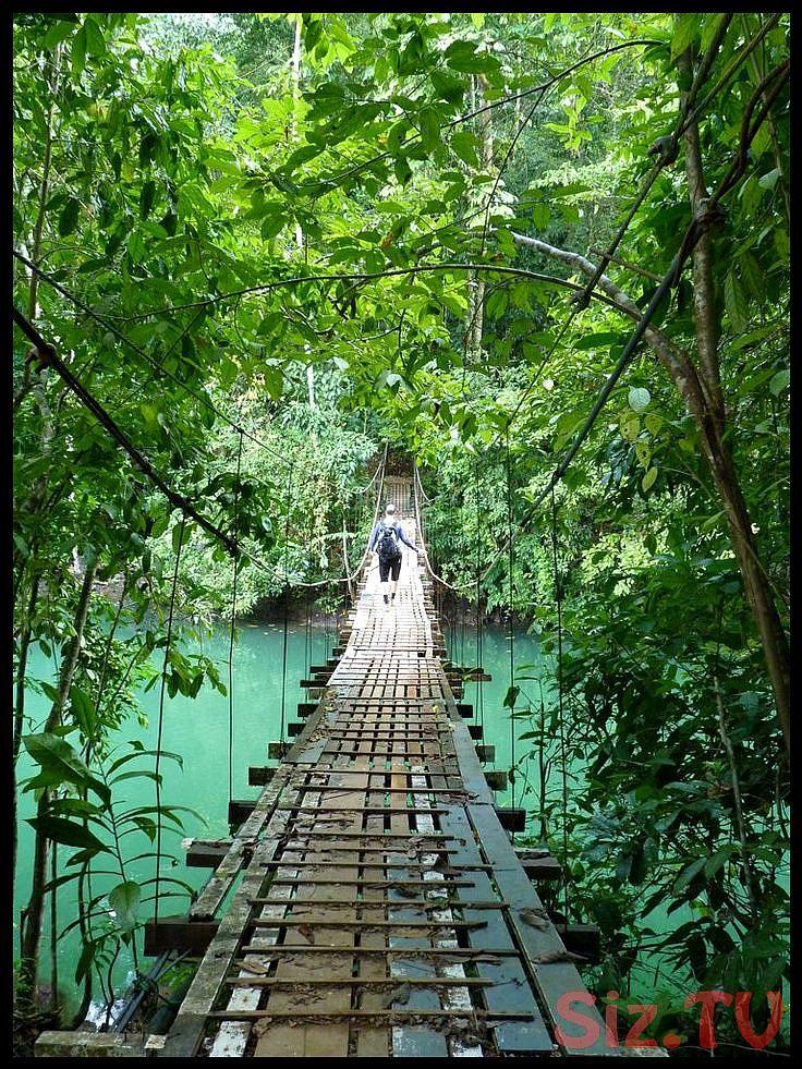 Pen nsula de Osa in Costa Rica when you travel with adventuresuncorked you ll expereince hidden treasures such as this adventuresuncorkeyou Pen nsula de Osa in Costa Rica...