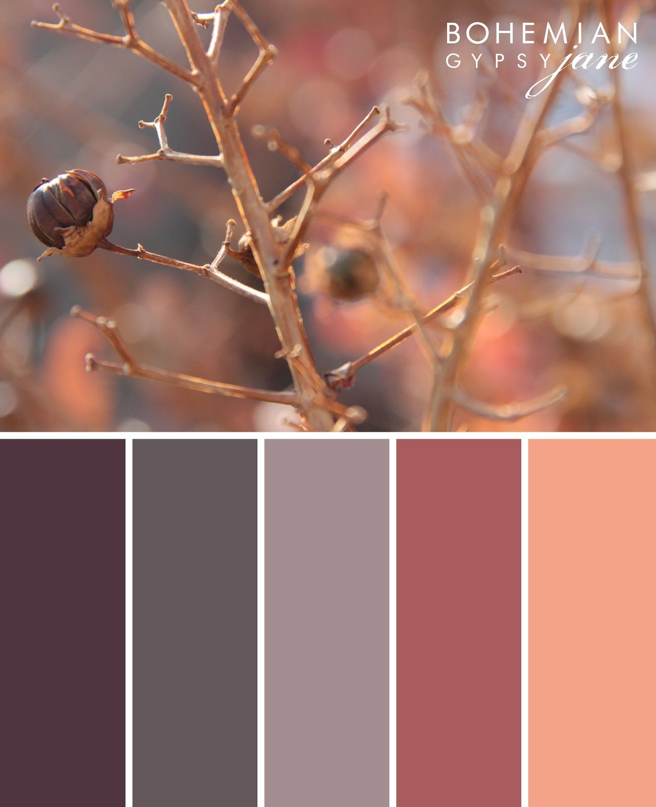 Bohemian Gypsy Jane Color Love Fall Color Inspiration Color Palettes Pinterest Awesome