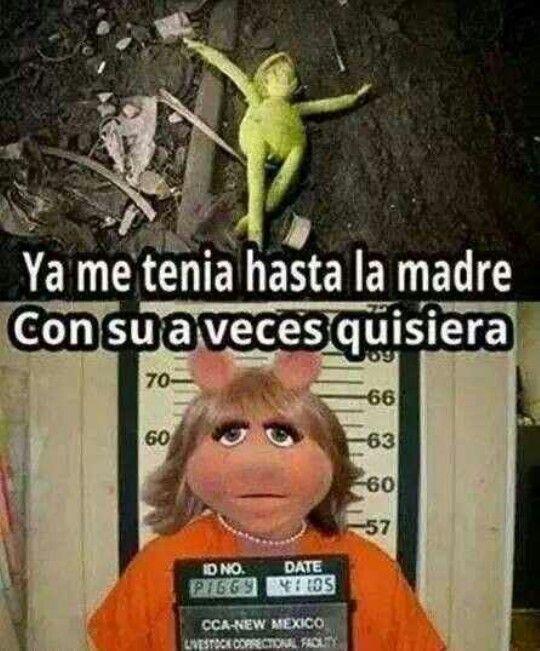 Yup Humor Funny Images Spanish Humor