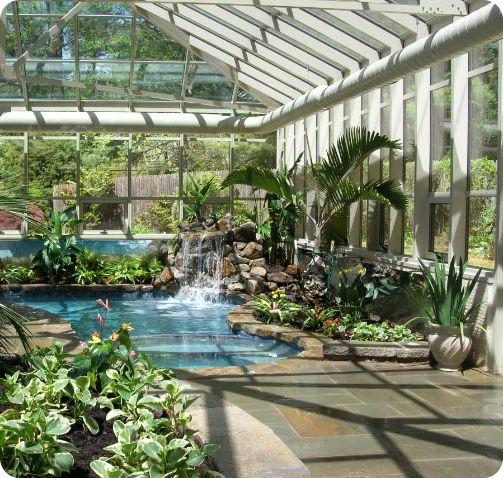 Polycarbonate Enclosure Lush Plants My Dream Pool Indoor Swimming Pool Design Dream Pools Swimming Pool Designs