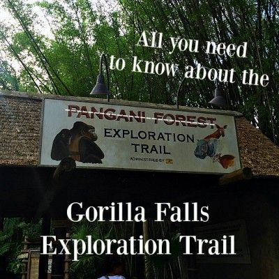 All About the Gorilla Falls Exploration Trail