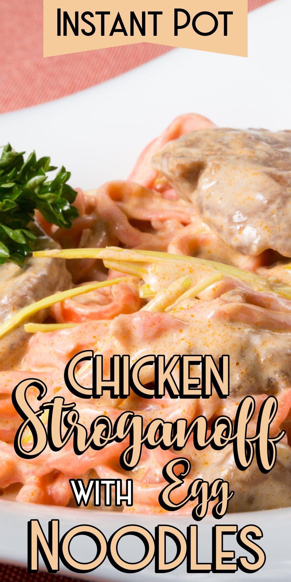 instant pot chicken stroganoff with egg noodles  recipe