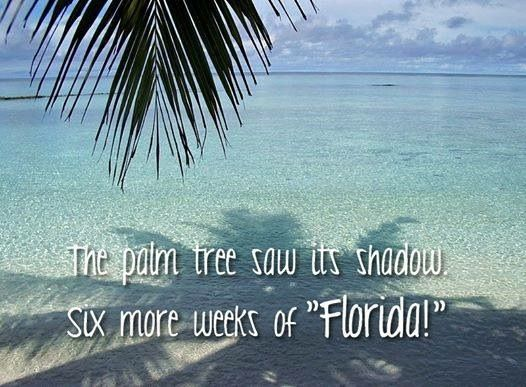 Florida Winter