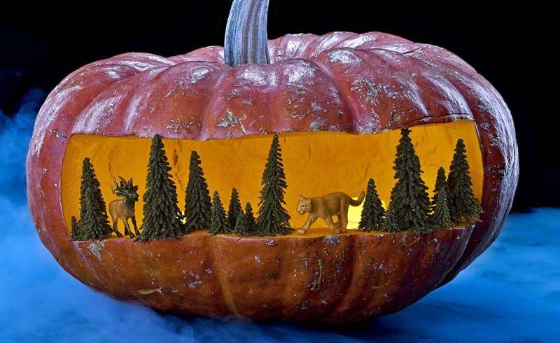 13 Fright-Tastic Outdoor Halloween Decorations Lifestyle Magazine