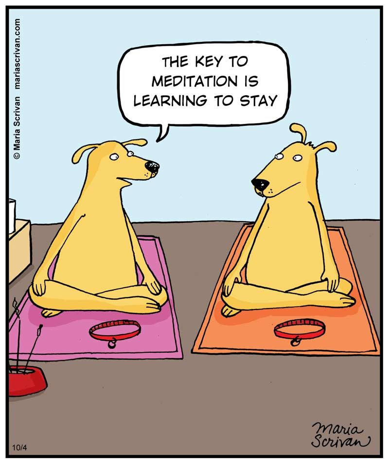 Cartoon Pictures Of Dogs Meditating Just Stay