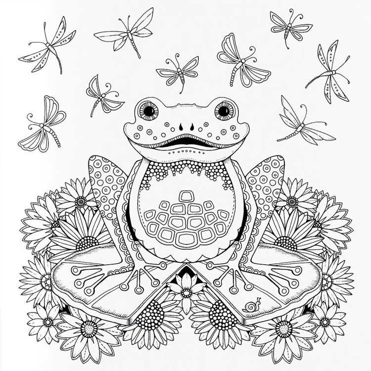 Related image | Frog coloring pages, Animal coloring pages ...