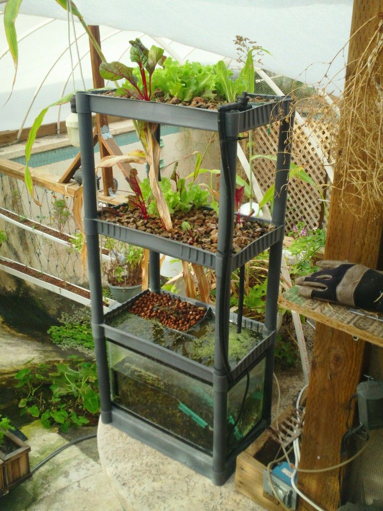 Shelving garden Take old shelving, a Fish tank, a pump and