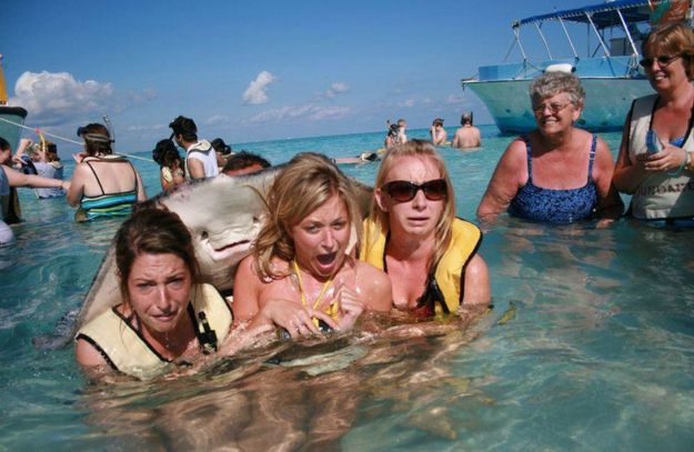 And the photobomb that changed the world: The stingray photobomb. | The 30 Most Powerful Photobombs Of The Year