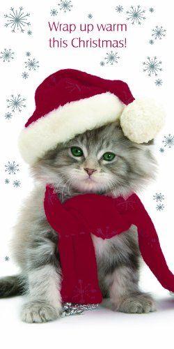 Kitten Christmas Cards.Merry Christmas Darling Kitten Christmas Cards