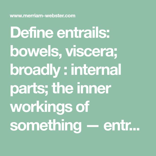 Define Entrails: Bowels, Viscera; Broadly : Internal Parts; The Inner  Workings Of