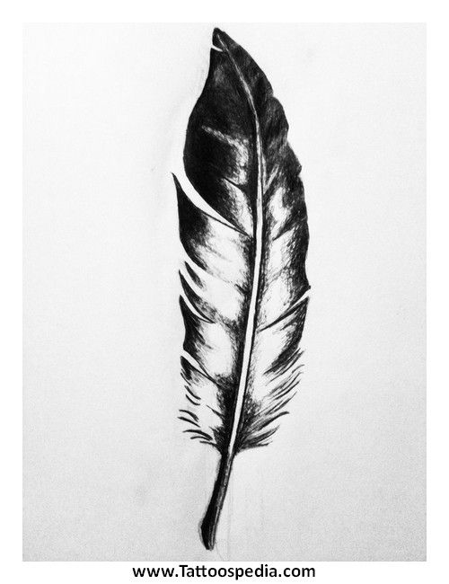 Eagle Feather Sketch | Beauty | Pinterest | Feather sketch, Eagle ...