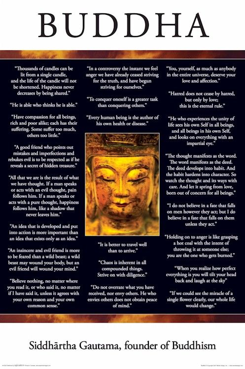 the life of gautama buddha a sage and the founder of the buddhist religion The life of buddha essay:: 1 works essay on life and journey of gautama buddha - buddha was gautama was the founder of buddhism, the religion and.