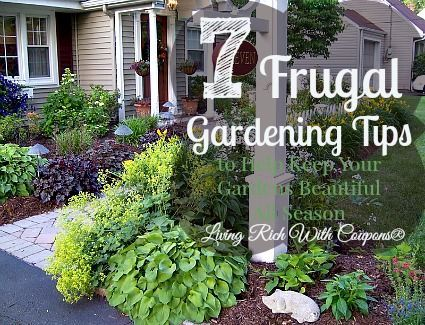 Gardening tips for beginners - Frugal Ways to Make Your Garden ...