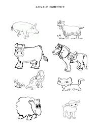 Imagini Pentru Animale Domestice Fișe De Lucru Grădiniță
