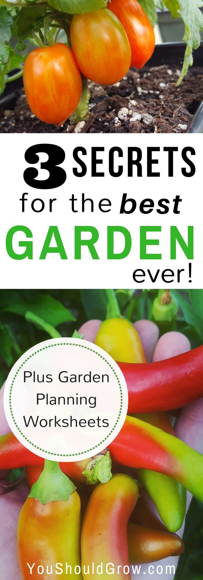 Do You Want To Grow Your Own Produce? Are You Wondering What To Grow In  Your Garden? If You Want To Start Gardening, But Youu0027re Not Sure Where To  Begin, ...