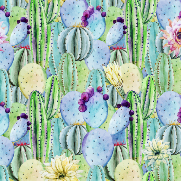 Watercolor Cactus Flowers Removable Wallpaper Cacti Wall