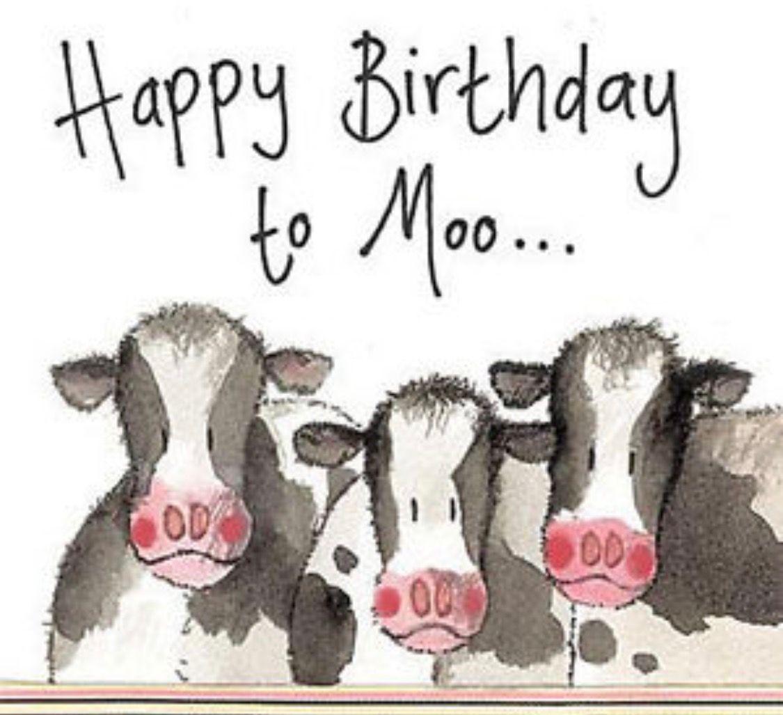 картинка корова с днем рождения рынке форекс может