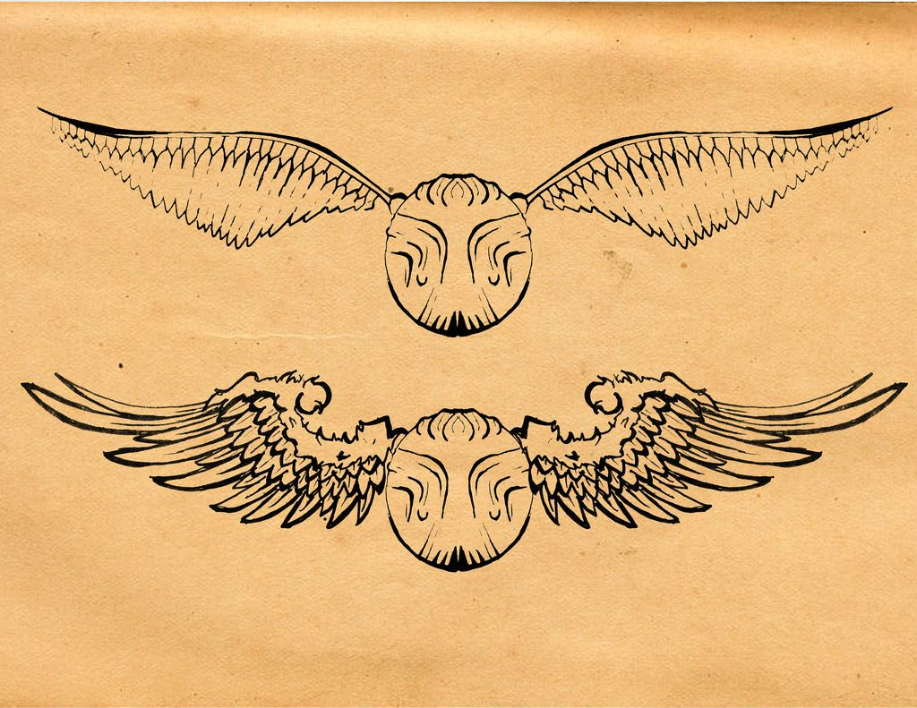 It's just a graphic of Ridiculous Harry Potter Snitch Drawing