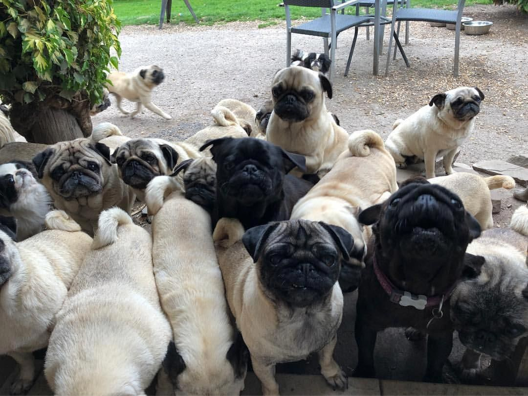 When The Dinner Queue Is Long Calling All Our Friends