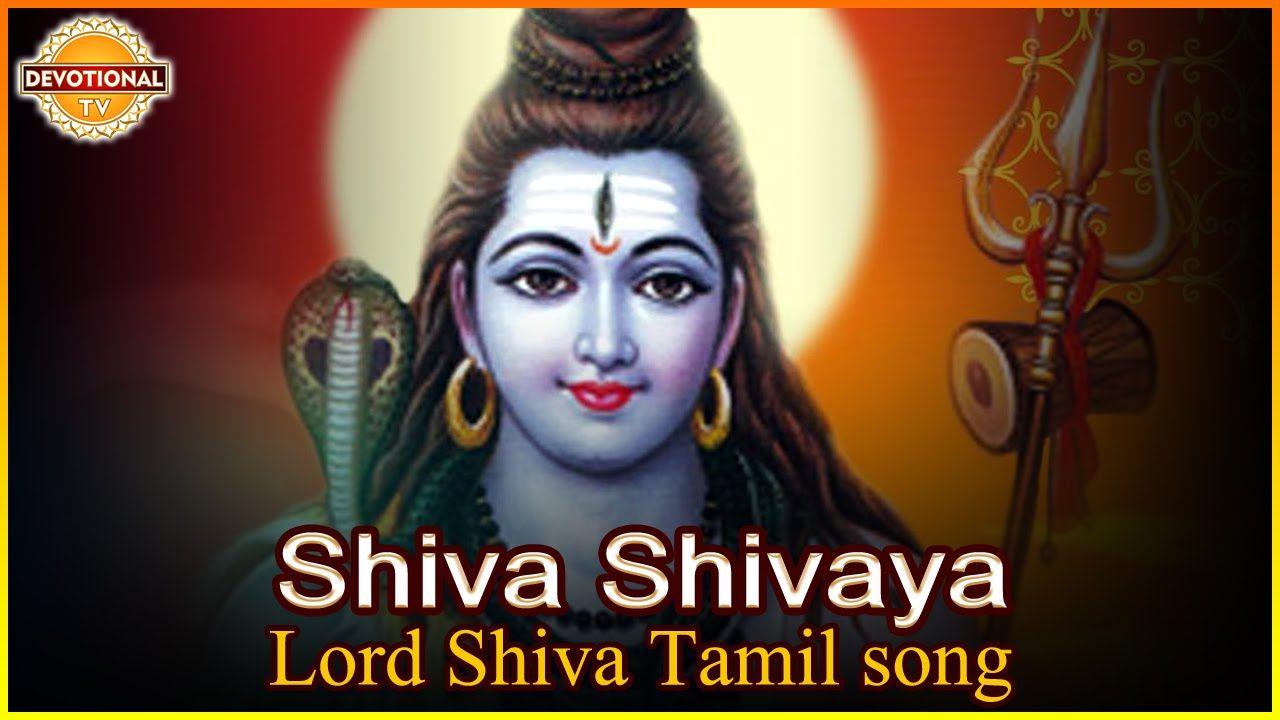 Lord Shiva Tamil devotional Song  Listen to Shiva Shivaya
