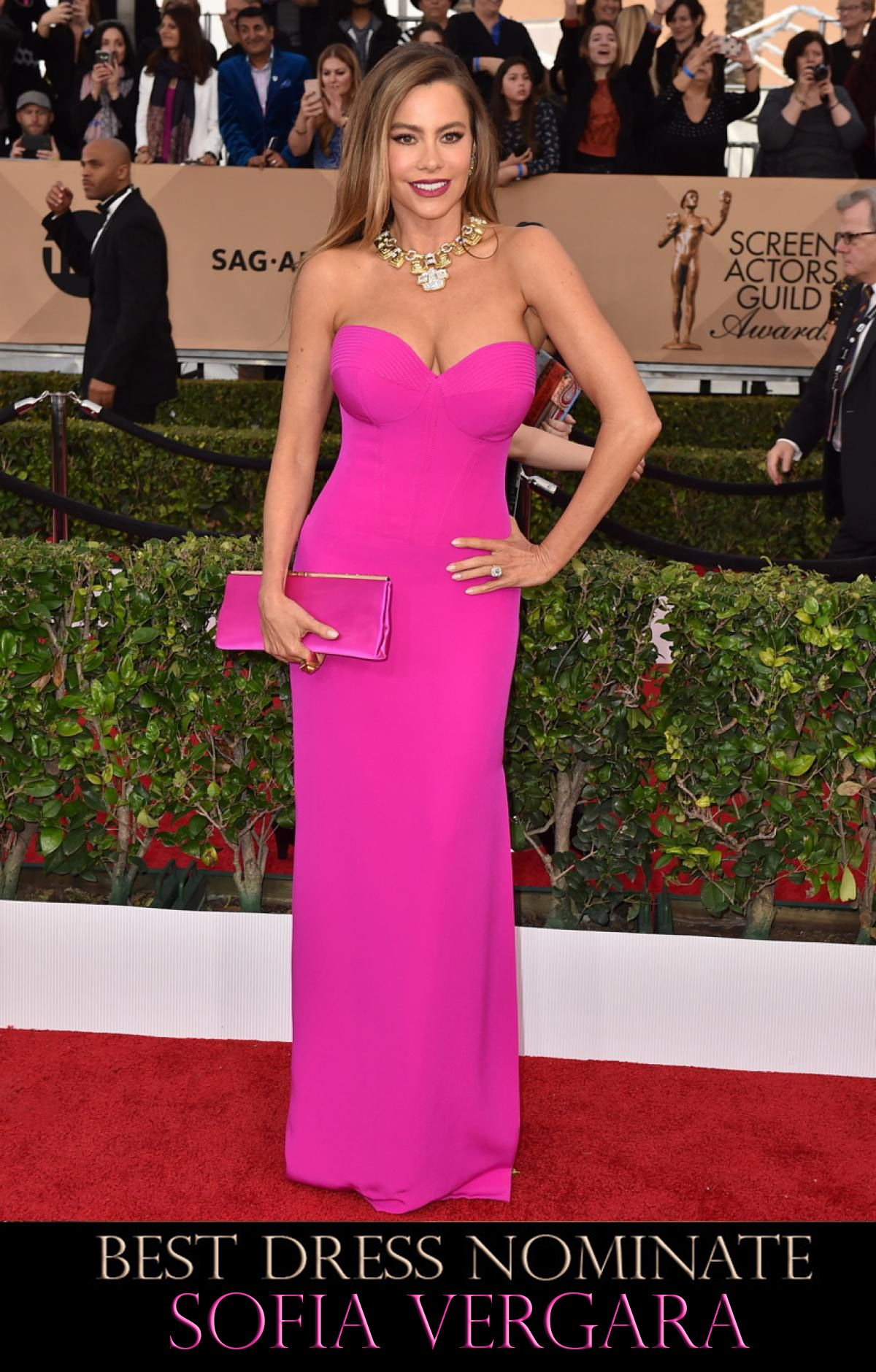 SAG Awards 2016 Red Carpet | Pinterest | Sofía vergara, Vestidos ...