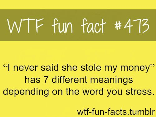 """I never said she stole my money"""" WTF fun facts 