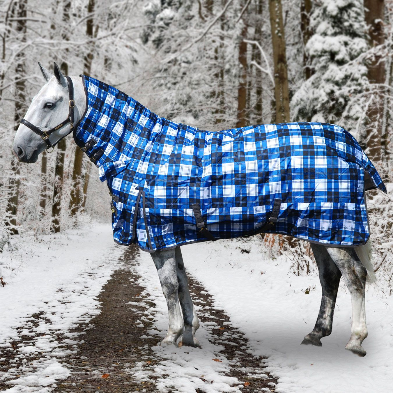 Derby House Heavy Combo Turnout Horse Rug In Sky Diver Black White Check