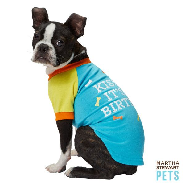 Is Someone S Birthday Right Around The Corner Martha Stewart Pets Kiss Me It S My Birthday Tee Petsmart 14 99 Martha Stewart Pets Animal Birthday Pets