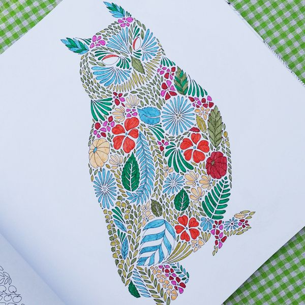 93 Animal Kingdom Coloring Book Owl