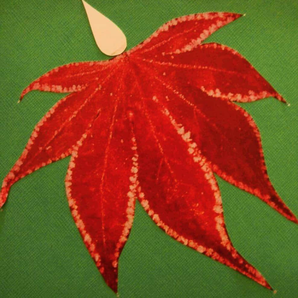 Happy Autumnal Equinox!  Happy Autumnal Equinox! #autumnalequinox Happy Autumnal Equinox!  Happy Autumnal Equinox! #autumnalequinox