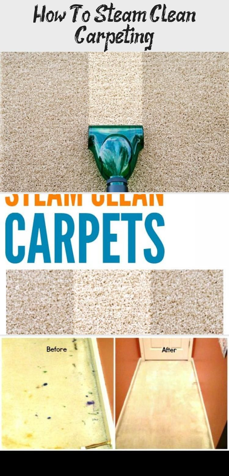 How To Steam Clean Carpeting Carpet Cleaning Business