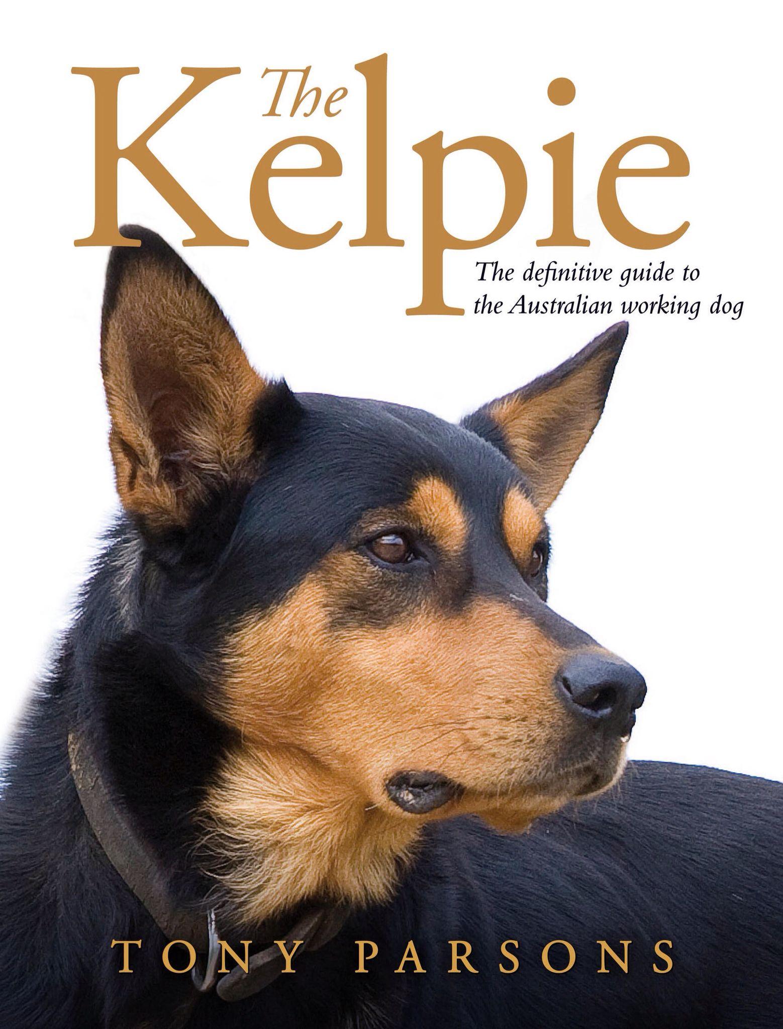 Book On Kelpies Australian Kelpie Dog Dog Training Obedience Dog Training