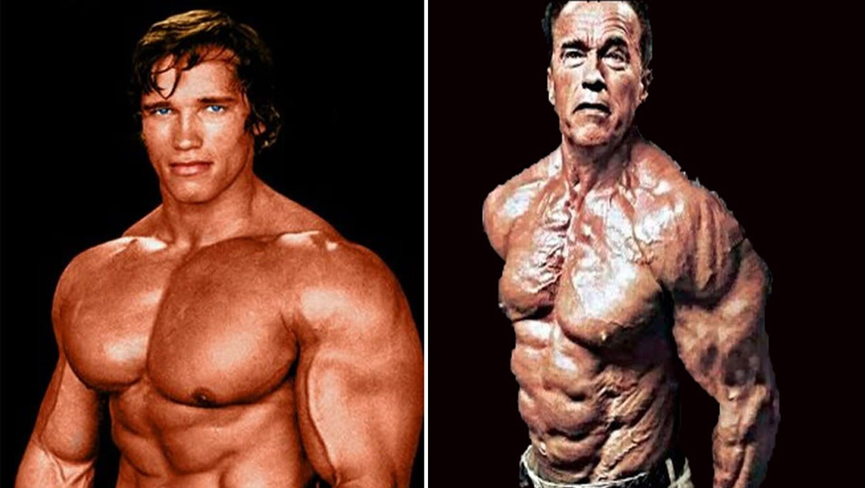 Arnold schwarzenegger best bodybuilder of all time bodybuilding best bodybuilder of all time arnold schwarzeneggers blueprint malvernweather Image collections