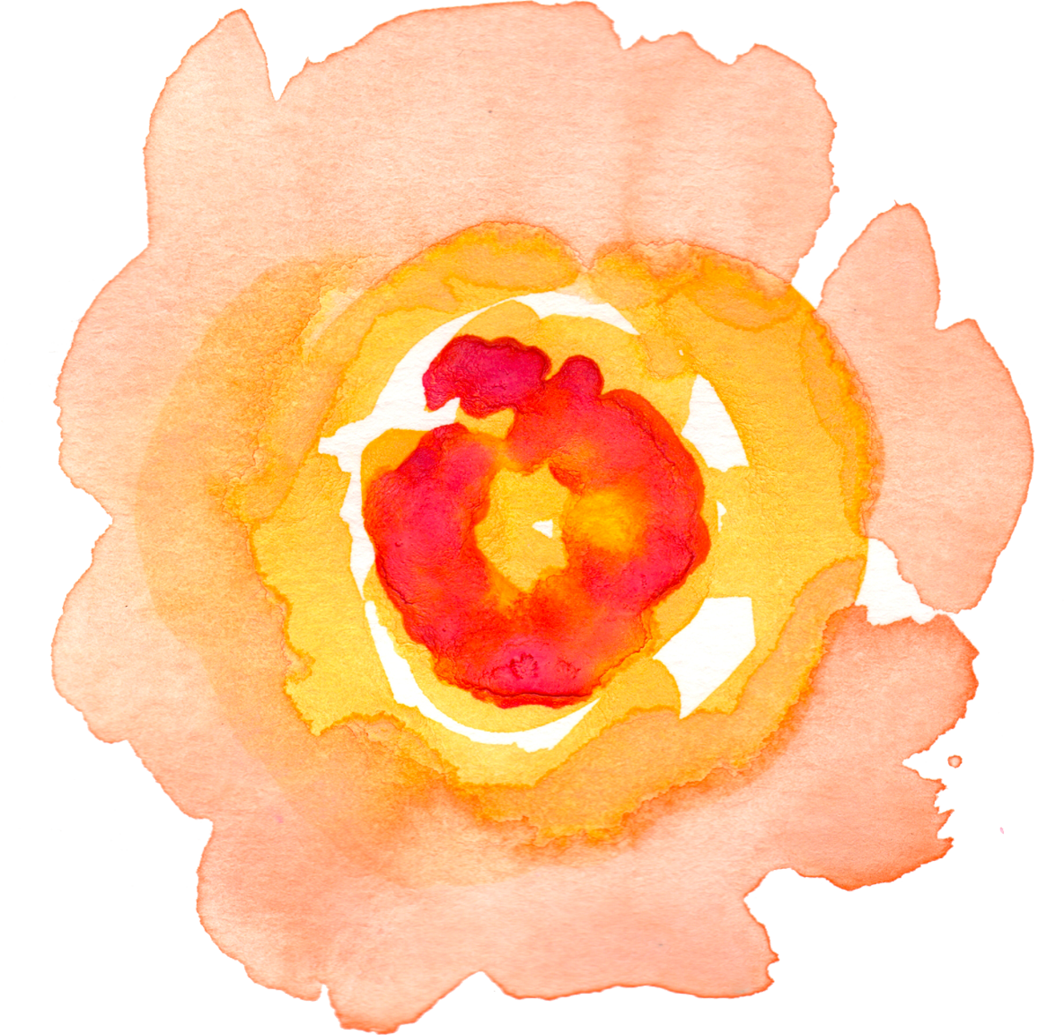 FPTFY_FreeWatercolorFlowers_THJ_1.png (1185×1153)(画像あり