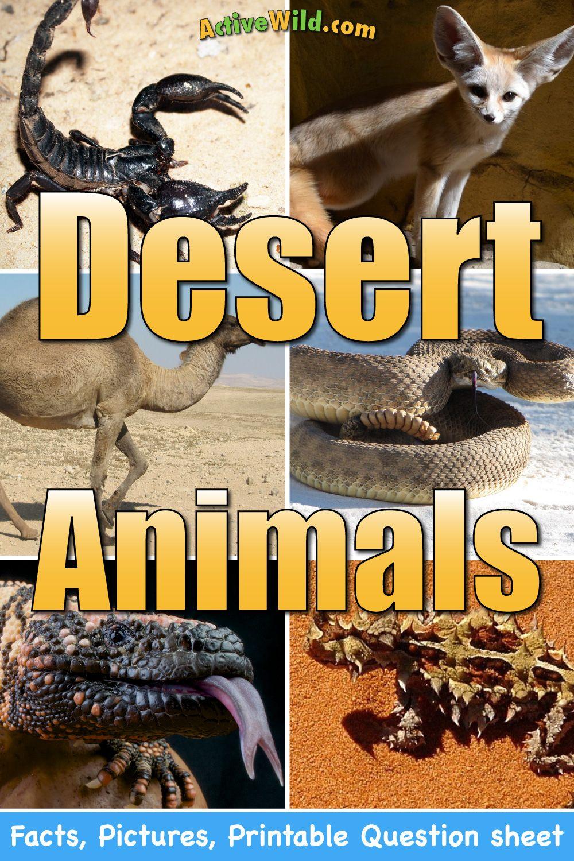 desert animals for kids list with