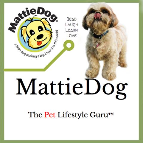 Blog The Pet Lifestyle Guru Dogs Cat Advice Dog Blog