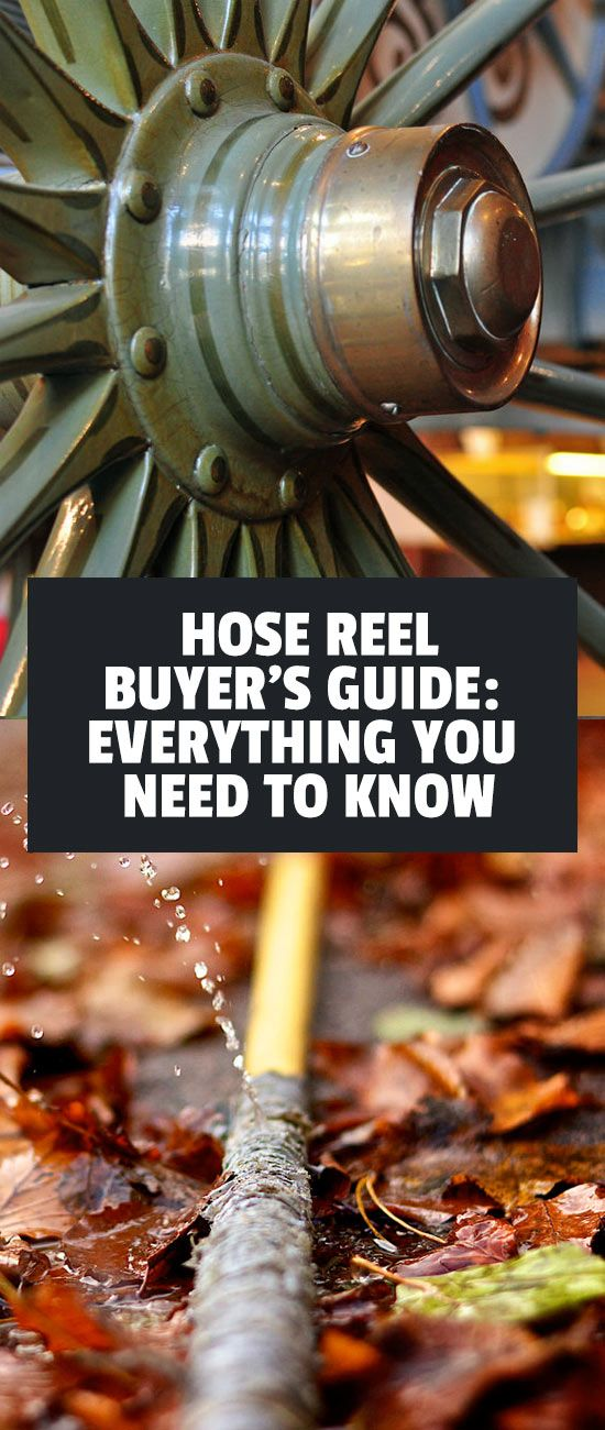 What To Look For In A Hose Reel Hose reel, Best garden
