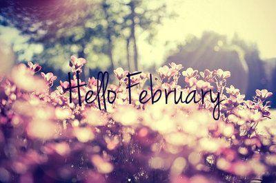 hello feb 3 feb